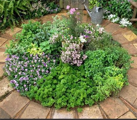 Great Design Idea For A Small Herb Garden Brick Borders Small Herb Garden Ideas
