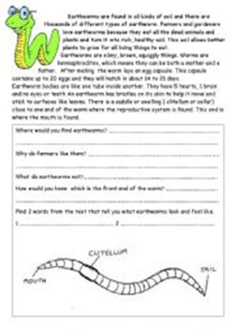 Earthworm Worksheet by Earthworm Worksheet Mmosguides