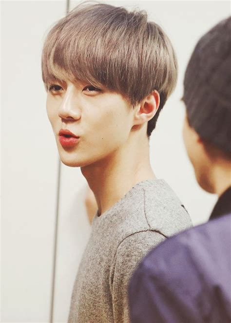 short biography of exo 17 best images about exo sehun on pinterest posts pop