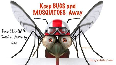 how to keep bugs and mosquitoes away the goodista