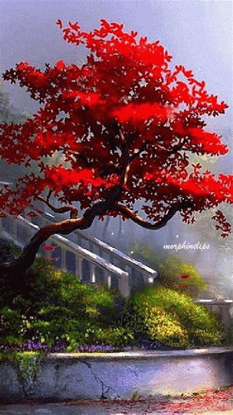 imagenes de jardines navidenos imagenes de jardines hermosos con movimiento