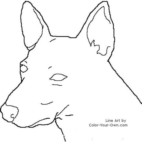 Rat Terrier Coloring Page | rat terrier dogs free coloring pages
