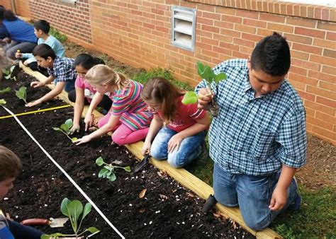 Bradley Gardens School by Getting Started Nc State Extension Publications