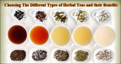 The Their Tea by Top 5 Different Types Of Herbal Tea And Their Miraculous
