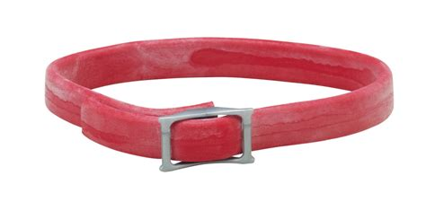 flea and tick collar for puppies flea and tick prevention for dogs 9 ways to protect your