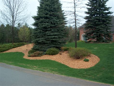 wood chips landscaping 32 best images about wood chips for landscaping on gardens hillside landscaping and