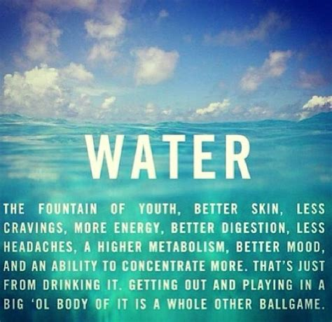 hydration quotes 17 best images about hydration motivation on