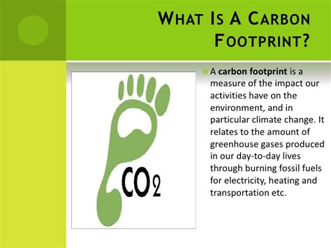 carbon footprint template carbon footprint template 28 images carbon footprints