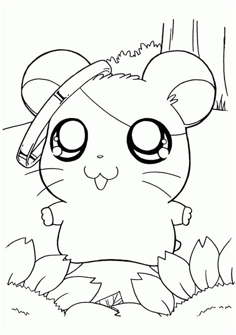funny hamster coloring pages
