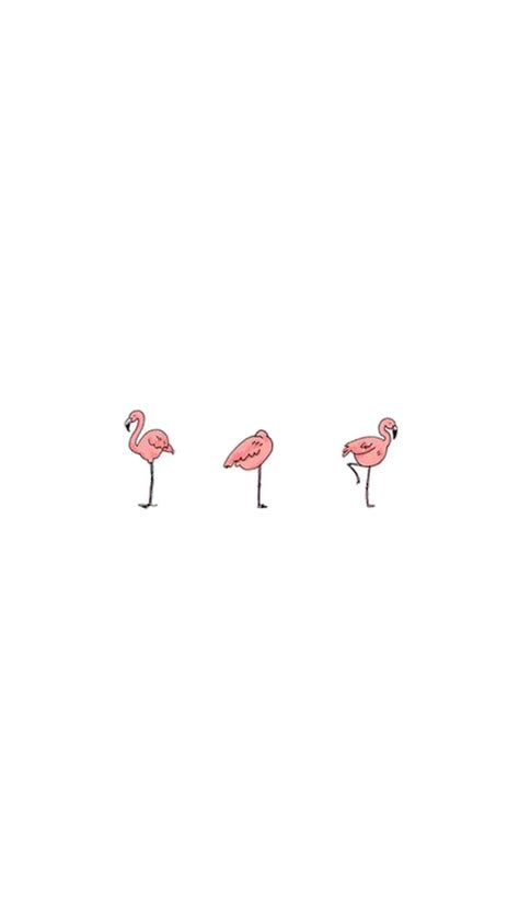 flamingo wallpaper iphone 5 simple flamingo birds illustration iphone 6 wallpaper hd