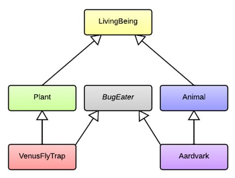 types of inheritance in with diagram hit the bits why use interfaces in object oriented