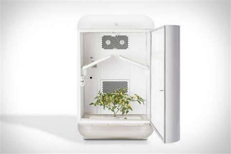 seedo   chic minimalist hydroponic garden