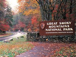 5 Bedroom Cabins In Gatlinburg how much do you know about the great smoky mountains