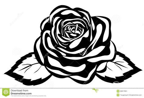 imagenes abstractas en blanco y negro rosa blanco y negro abstracta primer aislado ilustraci 243 n