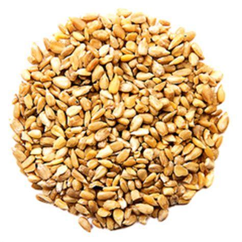black sunflower seeds protein content bird food products pet bird food