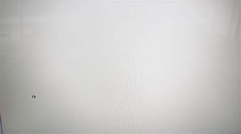 white photography backdrop background white gallery photo background white