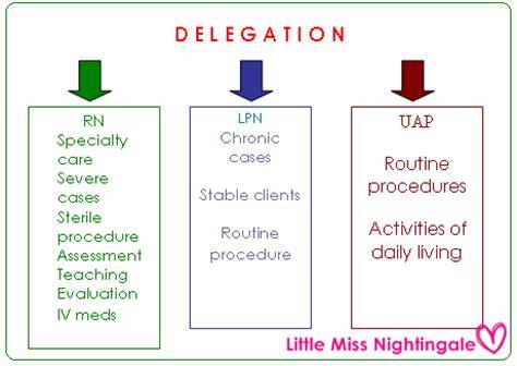 delegation little miss nurse