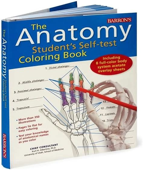 anatomy coloring book mccann eric wise anatomy coloring book barnes kaplan anatomy coloring book