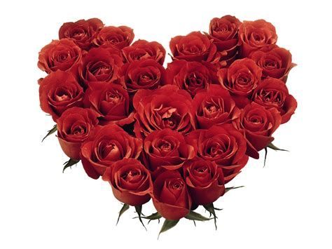 what of flowers for valentines day 6 ways to make your valentines day bouquet last longer