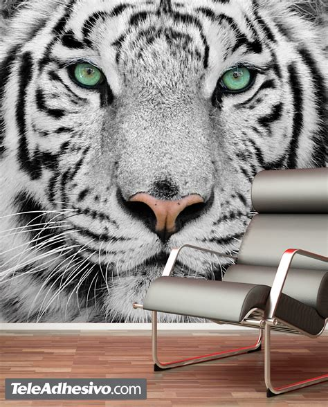 tiger wall mural white tiger