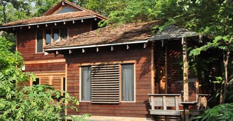 treehouse homes for sale 2 bedroom luxury treehouse villa for sale rivas