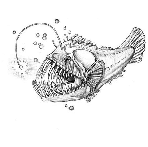 coloring pages of angler fish luminescene angler fish coloring pages best place to color