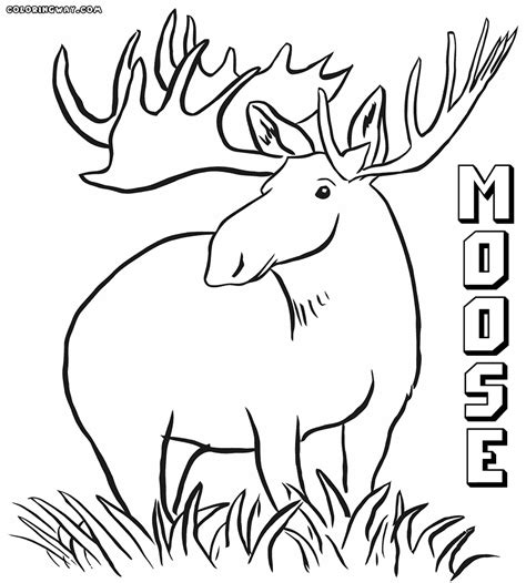 Coloring Page by Moose Coloring Pages Coloring Pages To And Print