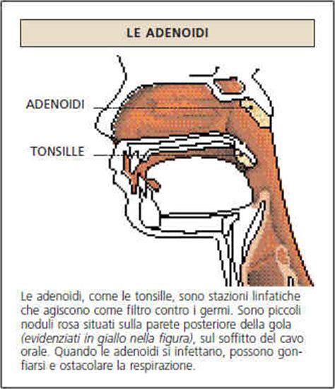 testo per combattere l acne la salute disturbi e malattie rimedi alle malattie acne