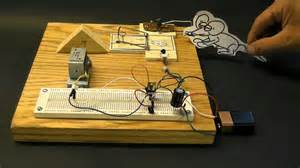 Diy Backyard Designs Diy Electronic Mousetrap Youtube