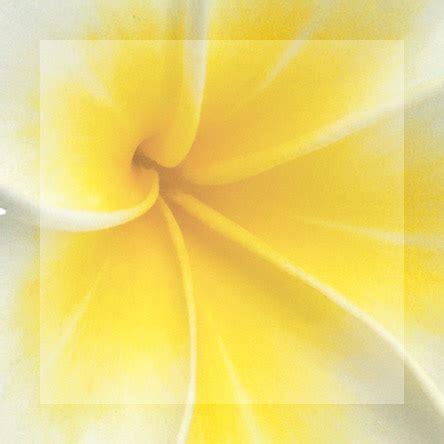 Corine De Farme Purity Micellar Water Original Terbaru produk kecantikan alami tips kecantikan corine de farme
