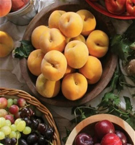 fruit n veg specials fruit veg city catalogue specials