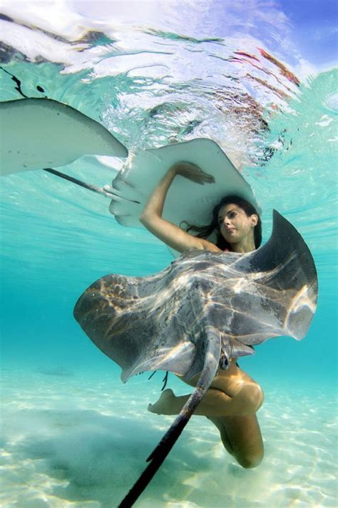 underwater  show gorgeous models swimming