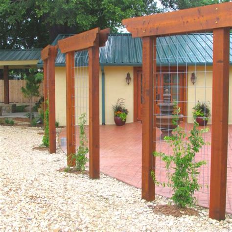 Trellis For Privacy Screen trellis as screen gardening ideas
