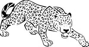 coloriage jaguar dessin 224 imprimer