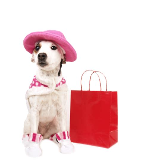 puppy shopping decadent dogs the ultimate collection for your k 9