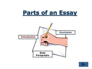 Essay On Writing Process by The Essay Writing Process