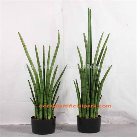 piante verdi da interno sjh010669 rendere le piante artificiali piante ornamentali