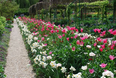 giverny  tulip fields  giverny