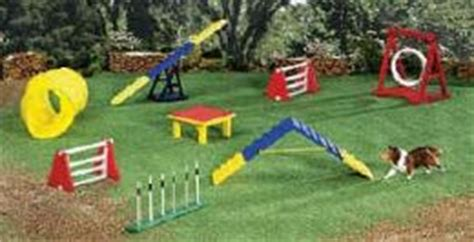 backyard obstacle course for dogs dog agility course