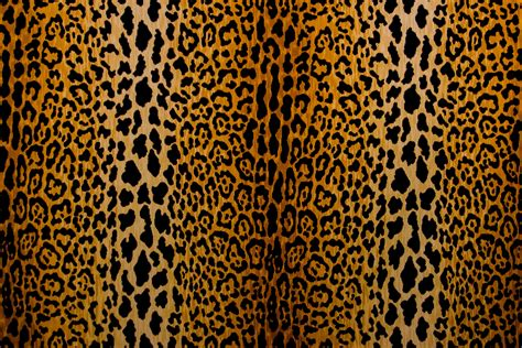 leopard print upholstery fabric leopard print fabric by the yard animal prints fabric