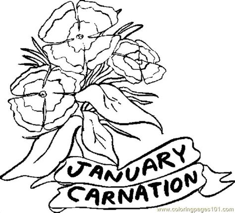 january coloring pages printable coloring pages 01 january carnation 1 natural world