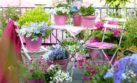 fiori per terrazzo piante da balcone tutte le piante e i fiori per un