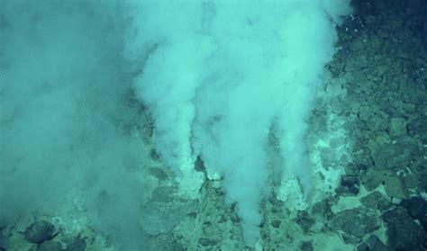 lebih banyak ikan di laut atau bintang di langit kisah 10 jenis ikan laut air dalam dengan wajah paling seram