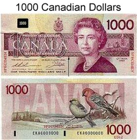 currency converter canadian to us dollars 1000 canadian dollars to us forex trading