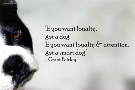 getting a puppy if you want loyalty get a quotesvalley