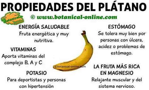 q proteinas tiene el banano valor nutricional pl 225 tano
