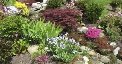 pflanzen und gartenbedarf steingarten planen anlegen und tipps mein sch 246 ner garten