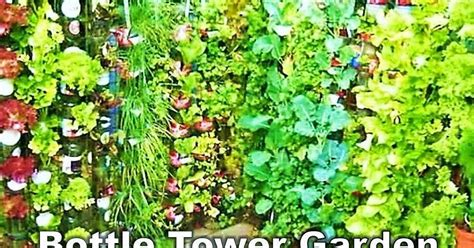 Tower Vegetable Garden Diy Dazzlers Welcome To Easy Diy Diy Garden Tips