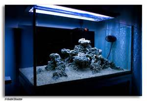 On the Rocks   How to Build a Saltwater Aquarium Reefscape