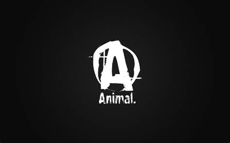 Suplemen Fitness Universal animal pak wallpapers wallpaper cave